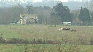 village de marques à Coutras-terre-agricole